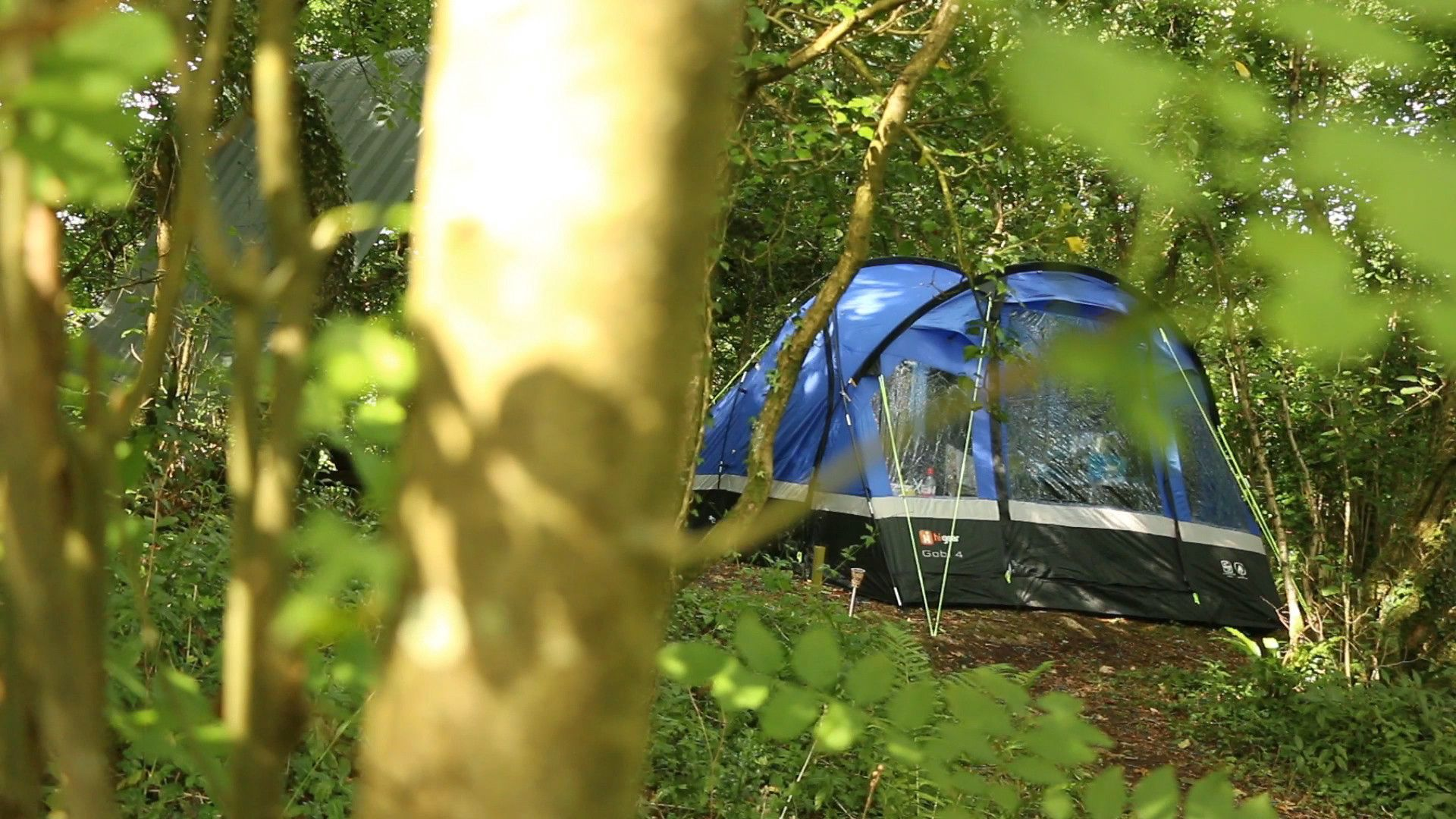 Campsites in South Wales