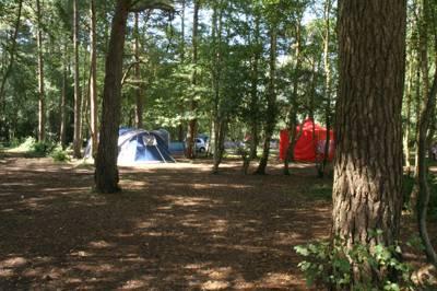 Burnbake Campsite Rempstone, Corfe Castle, Wareham, Dorset BH20 5JH