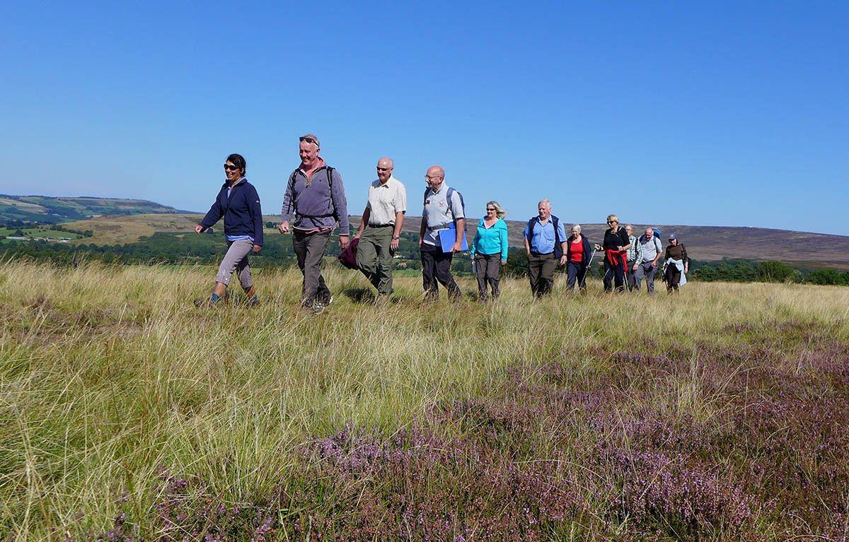 Walking in the North York Moors