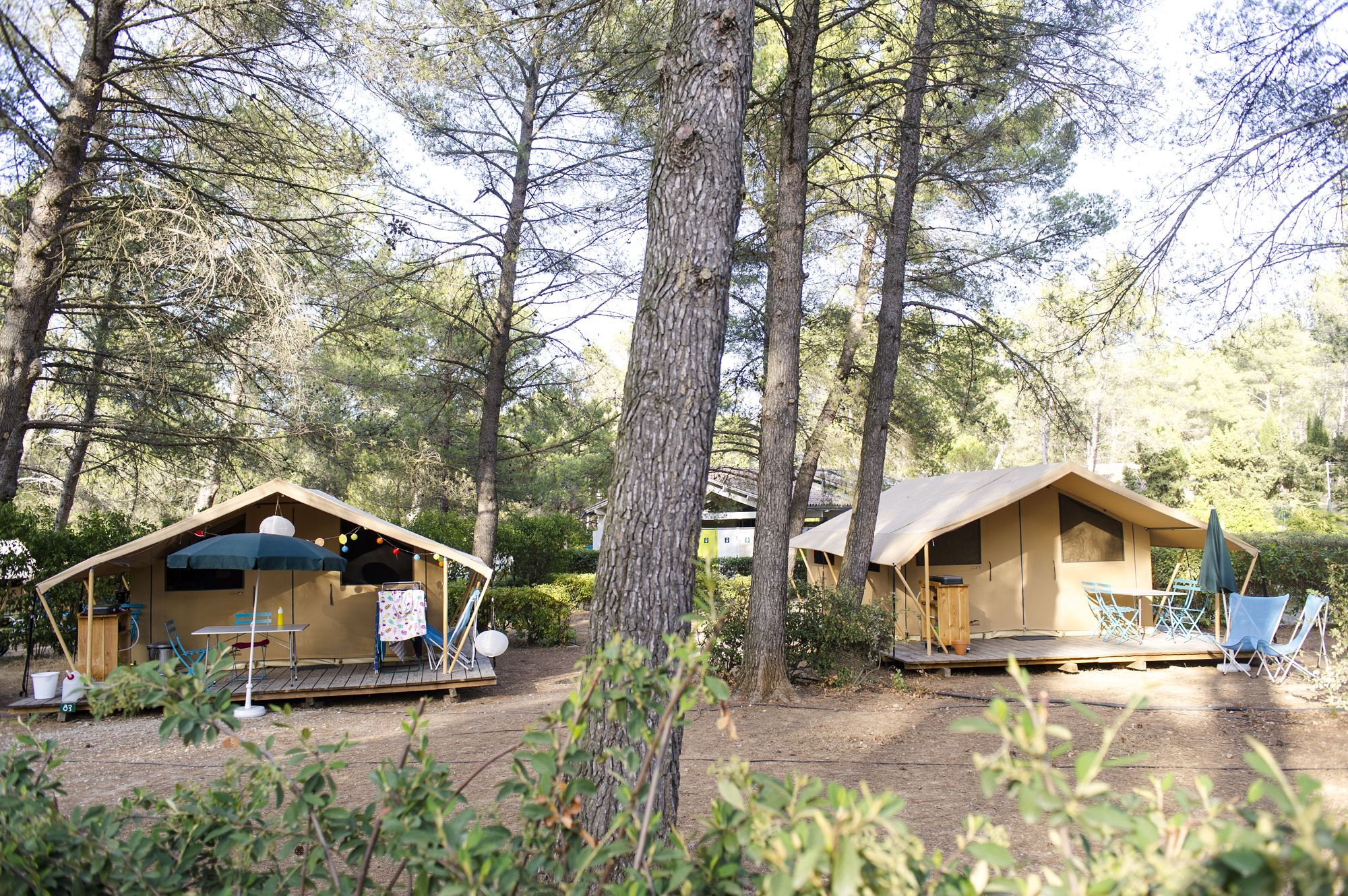 Family-friendly camping in Provence in the foothills of the Alpilles Regional Park with a swimming pool, a café and the historic village of Fontvieille on the doorstep.