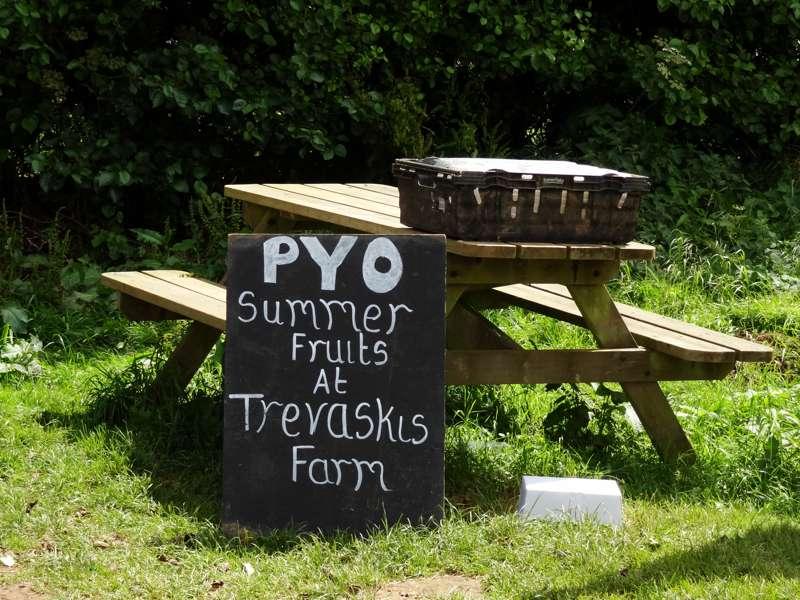 Trevaskis Farm