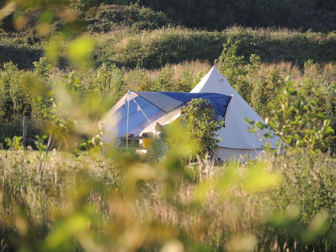 Greener Camping Club Campsites