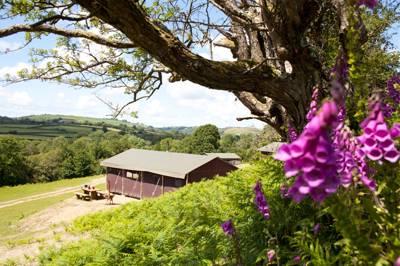 Pant yr Hwch Farm Llanwnnen, Lampeter, Ceredigion SA48 7LY
