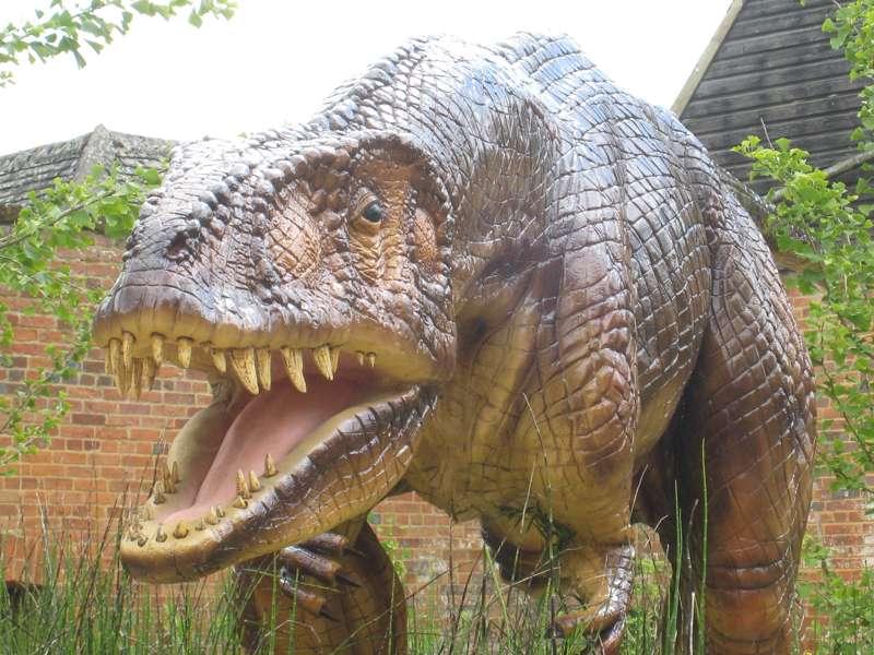 Oxfordshire Museum, Woodstock