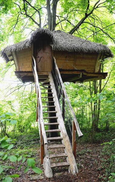 """Drakkar"" Tree House"