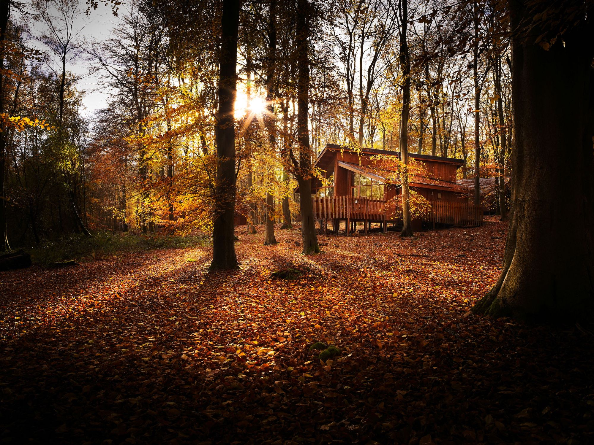 A collection of stunning luxury log cabins across the UK