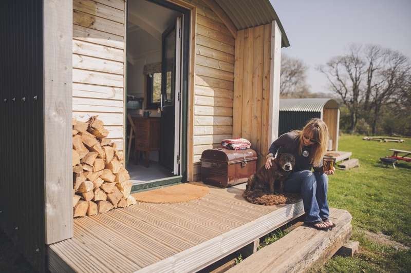 Dog-friendly campsites in Pembrokeshire