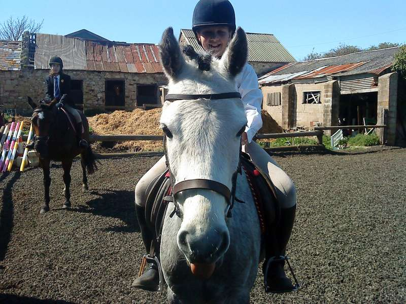 Hill Farm Riding Stables