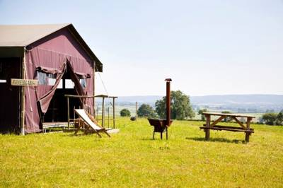 Beautiful 300-acre organic farm in the heart of Somerset.