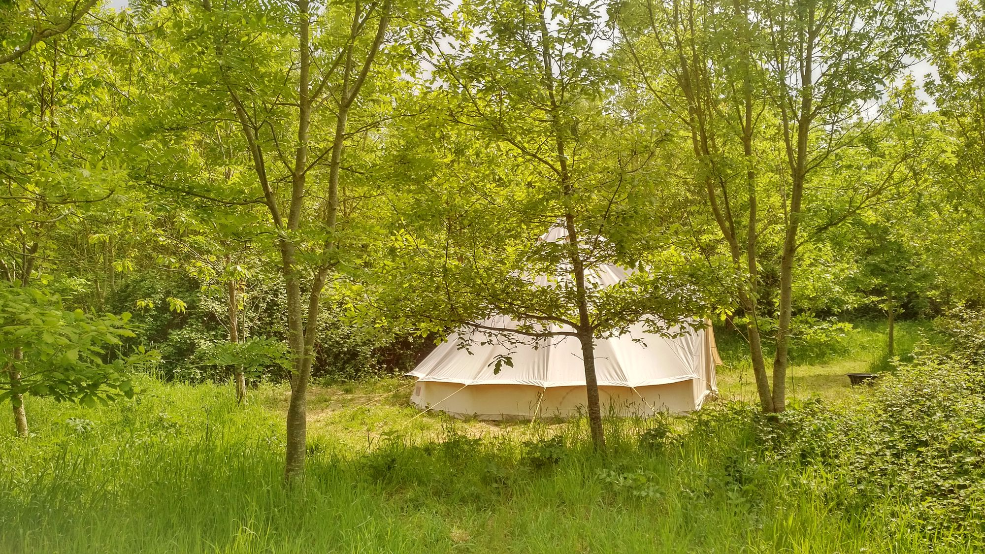 Bell tent glamping in Somerset at Woodland Escape