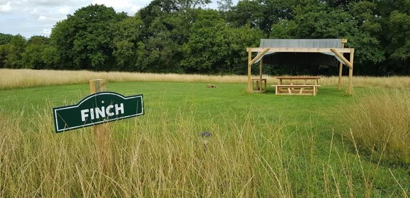 Finch - Grass Pitch