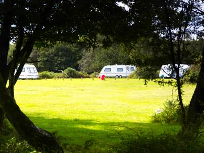 One of 'Camping in the Forest's' ten New Forest locations, Longbeech comes steeped in wartime history and brimming with rare flora and fauna.