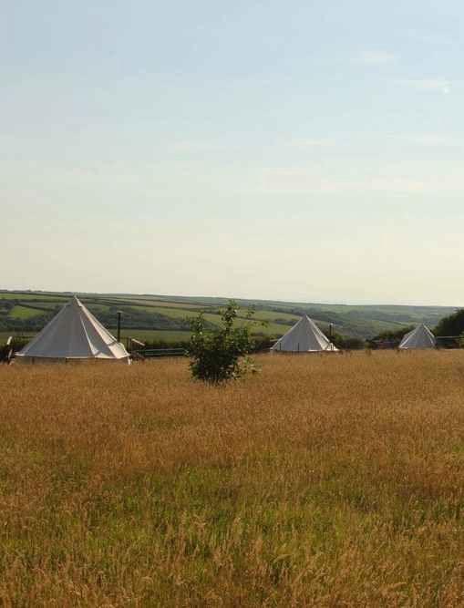 Bell tent glamping in Devon