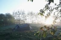 3.8m x 4m  Tent pitch No. 14