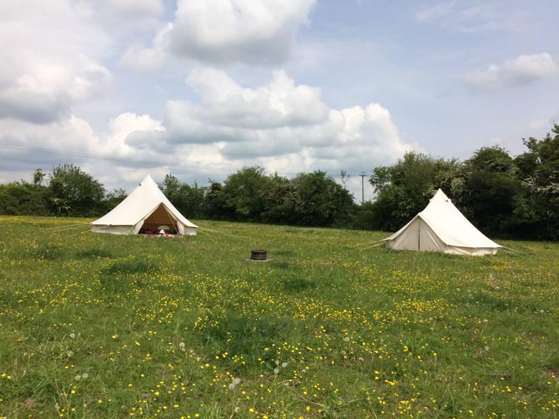 Maple Field Camping Martin, Fordingbridge, Hampshire SP6 3LR