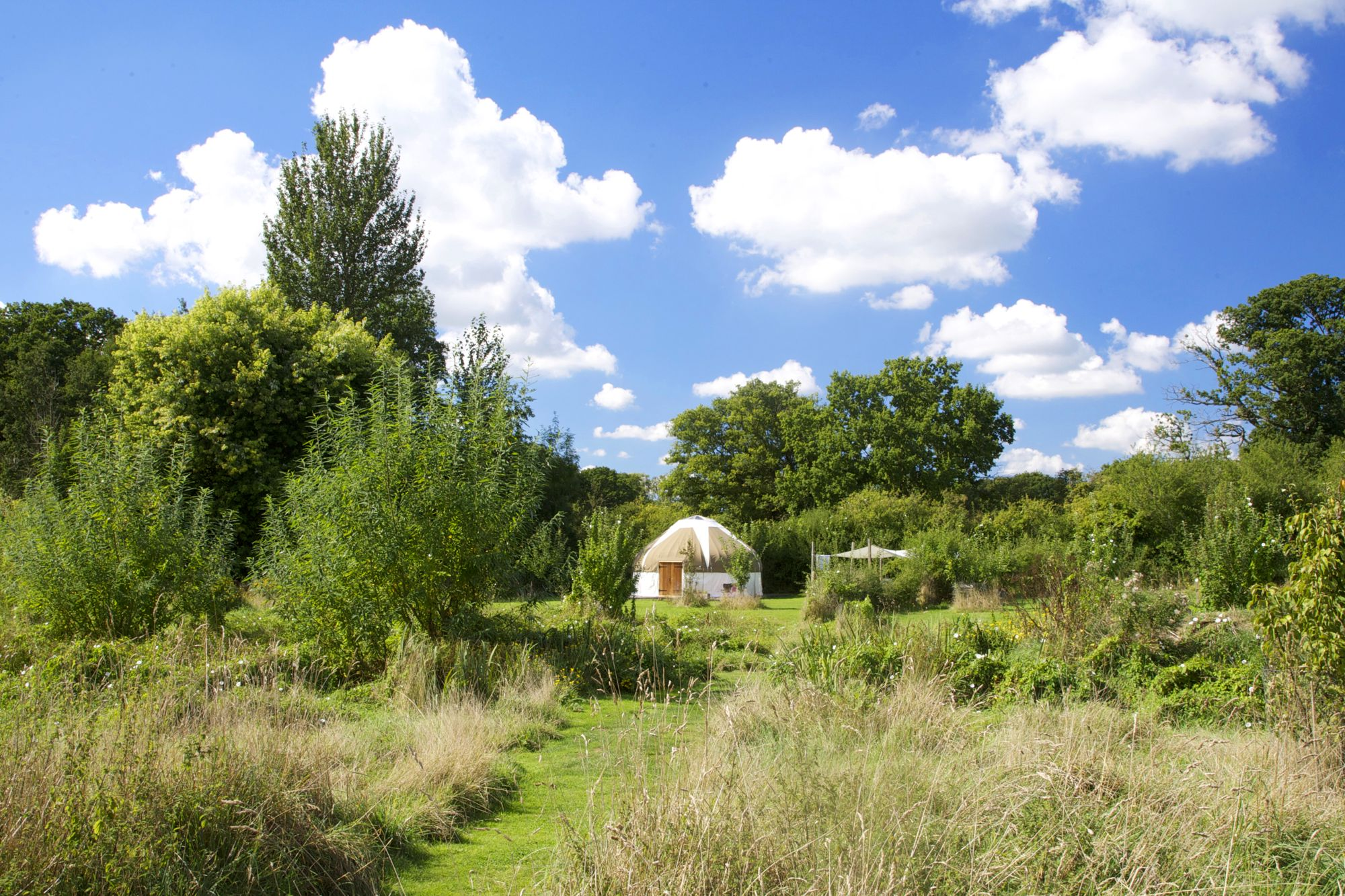 Glamping in Dorset: True organic, family glamping in a beautiful corner of the Dorset countryside.