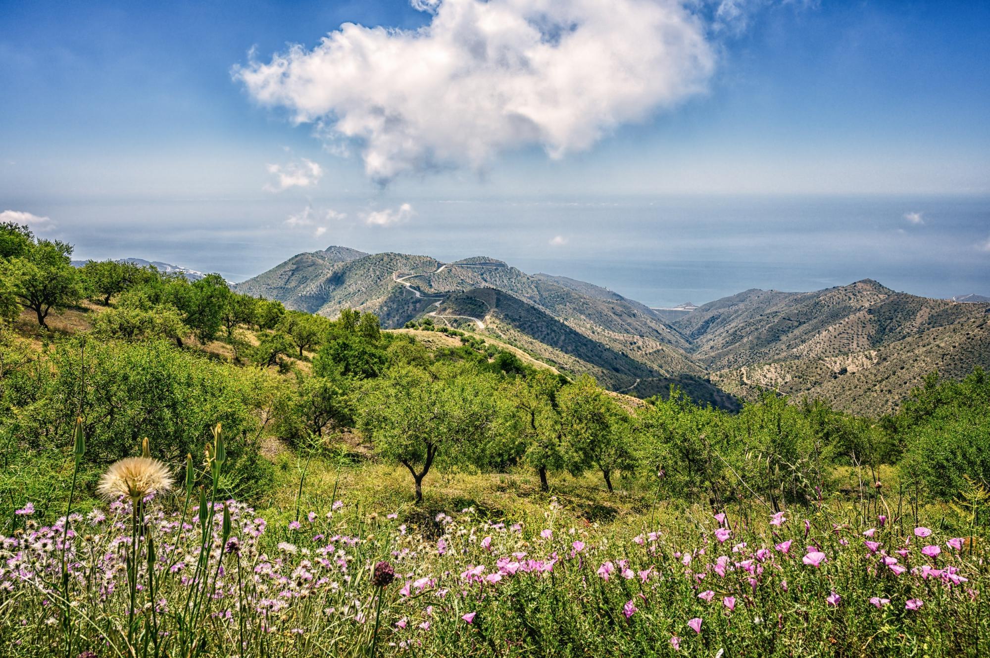 Campervan Hire in South Spain | Motorhome Rental in Southern Spain