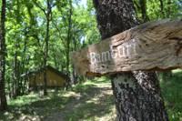 Bamburi, Woodland Safari Tent