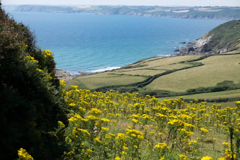 Enjoy coastal walks and stunning sea views.