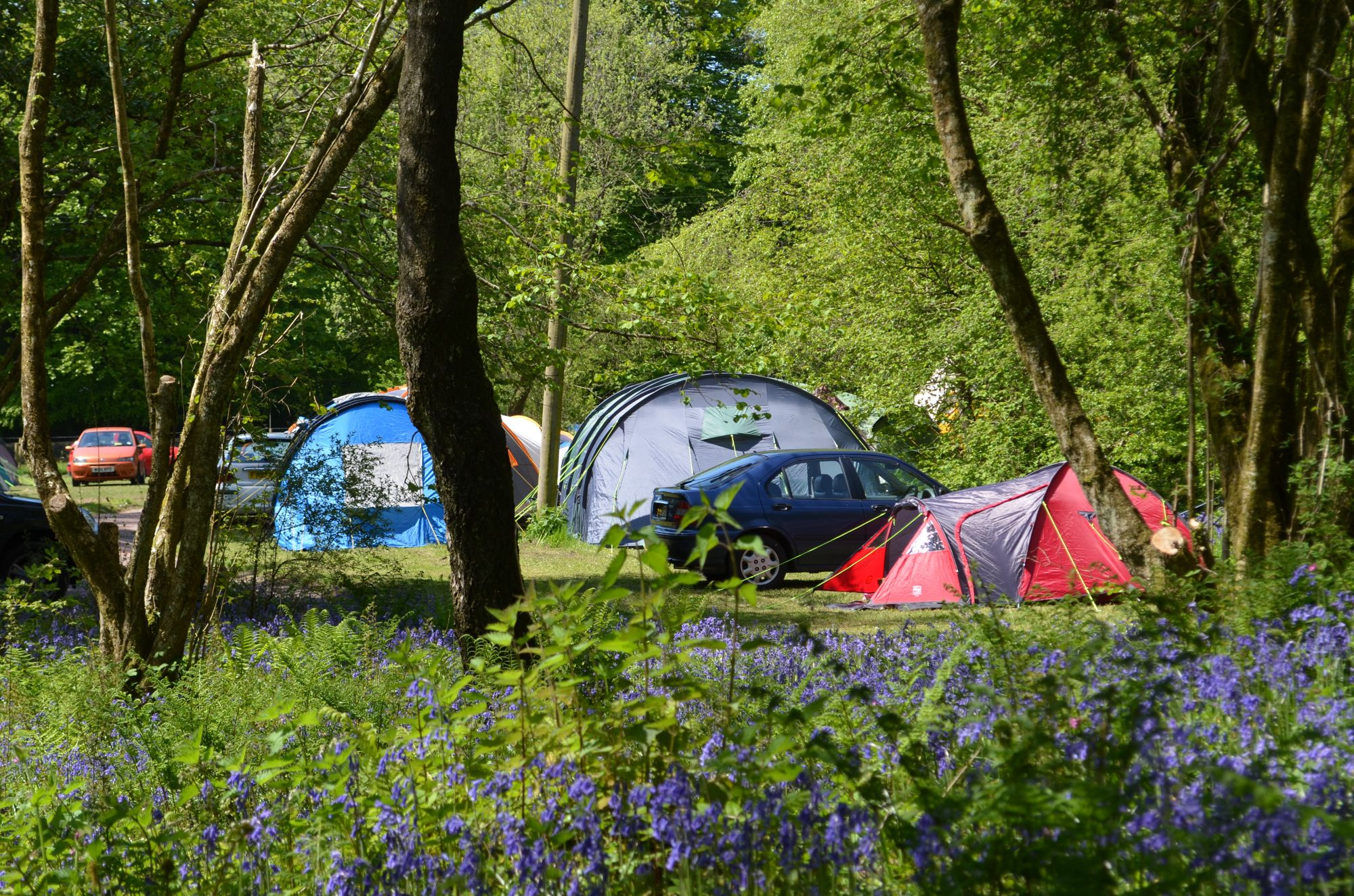 Campsites in Cullompton holidays at Glampingly