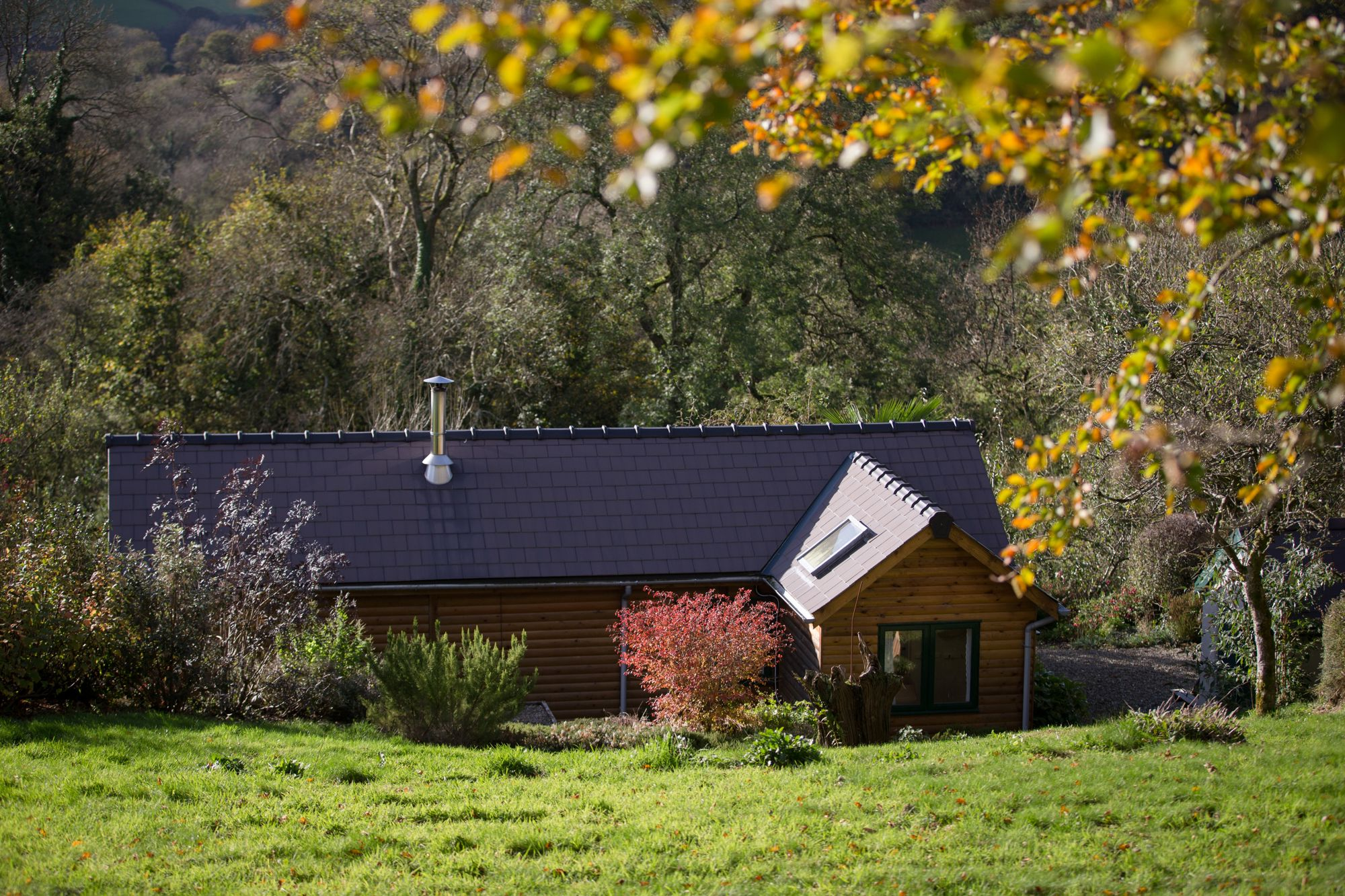 Dog Friendly Places To Stay Near Cardigan Wales