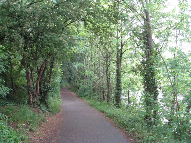 Bristol–Bath Railway Path