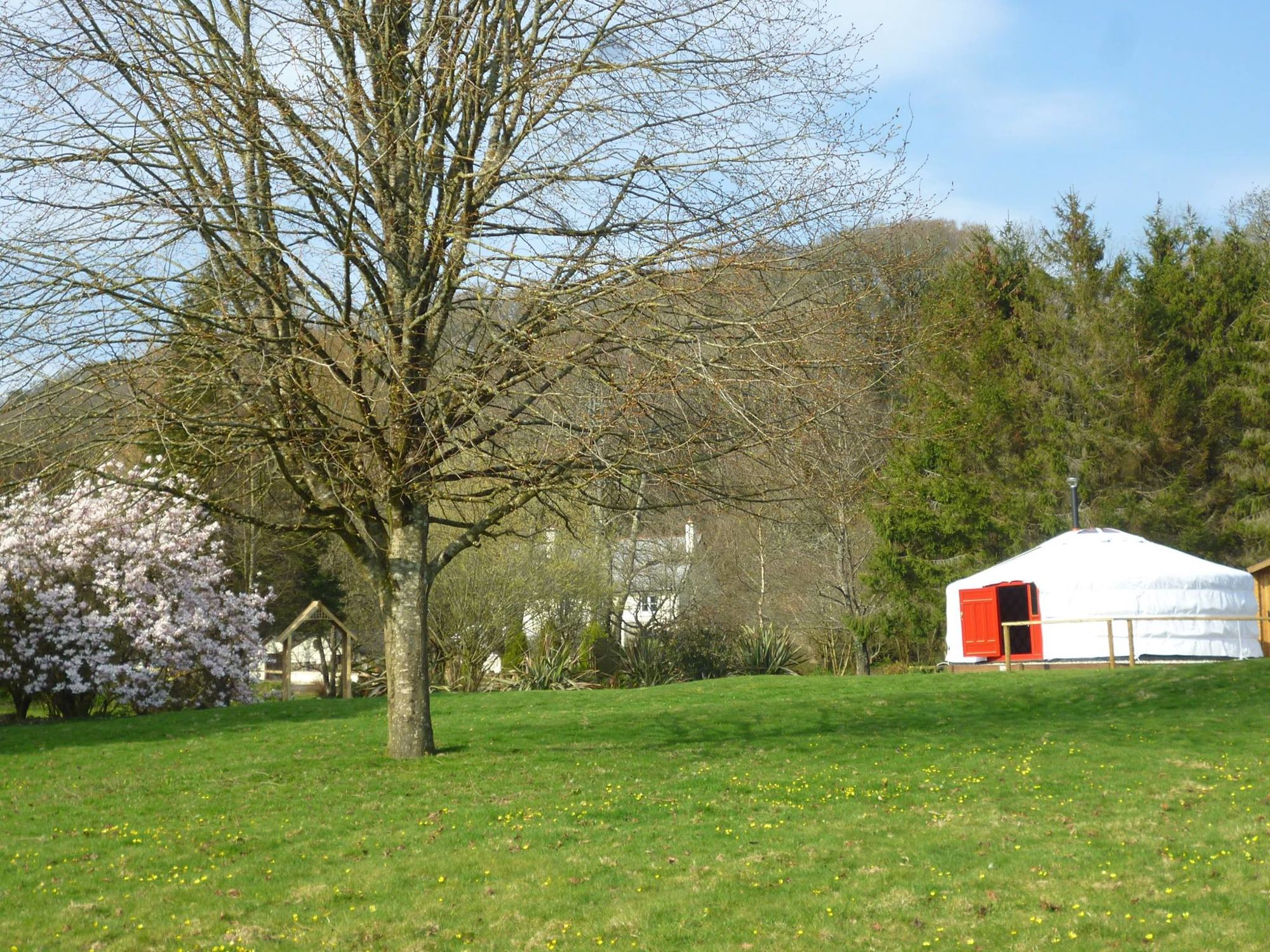 Yurt glamping on picturesque banks of the river Tamar, right on the Devon Cornwall border.