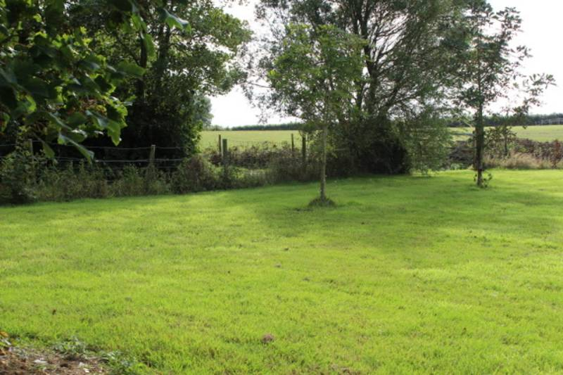 Grass pitch for campervan