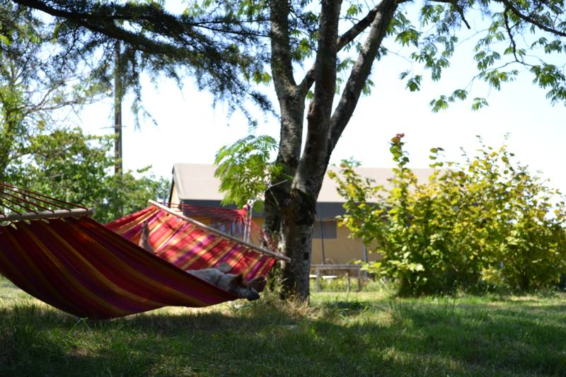 Simply Canvas hammock by the tents