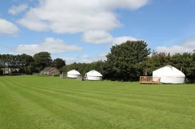 Luxury Cornish Yurts Little Fursdon, Merrymeet, Liskeard, Cornwall, PL14 5AG