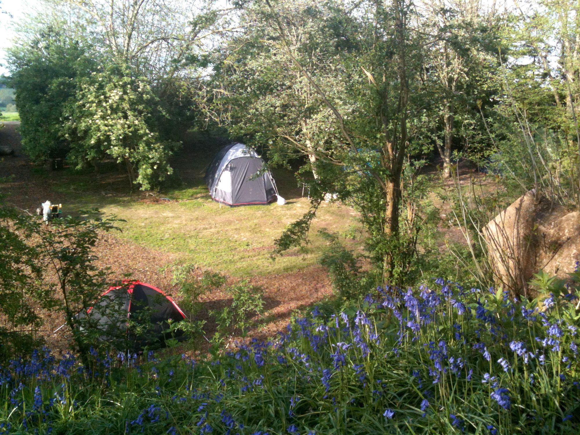 A secret, shady glade near an old castle may sound like the stuff of fairy tales, but Hop Pickers Campsite is no fantasy.