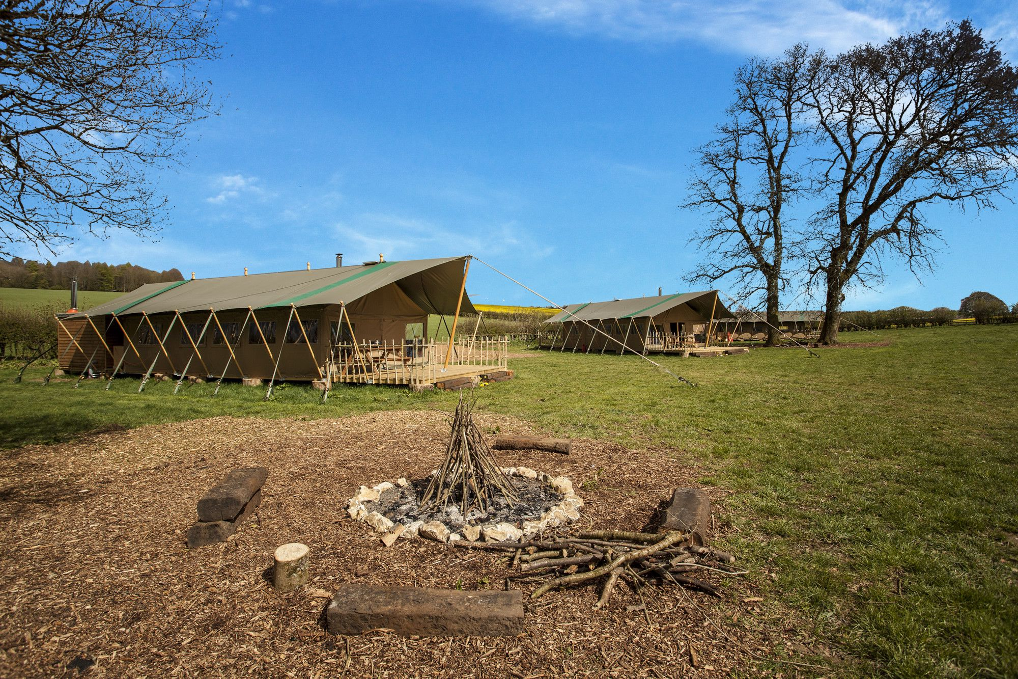 Glamping in the new forest