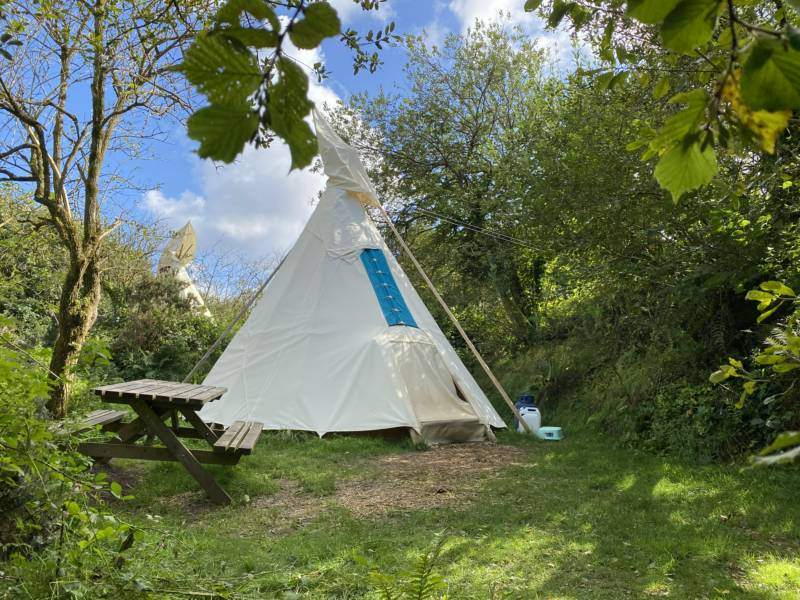 Jackies Medium - Medium Tipi - Private Site