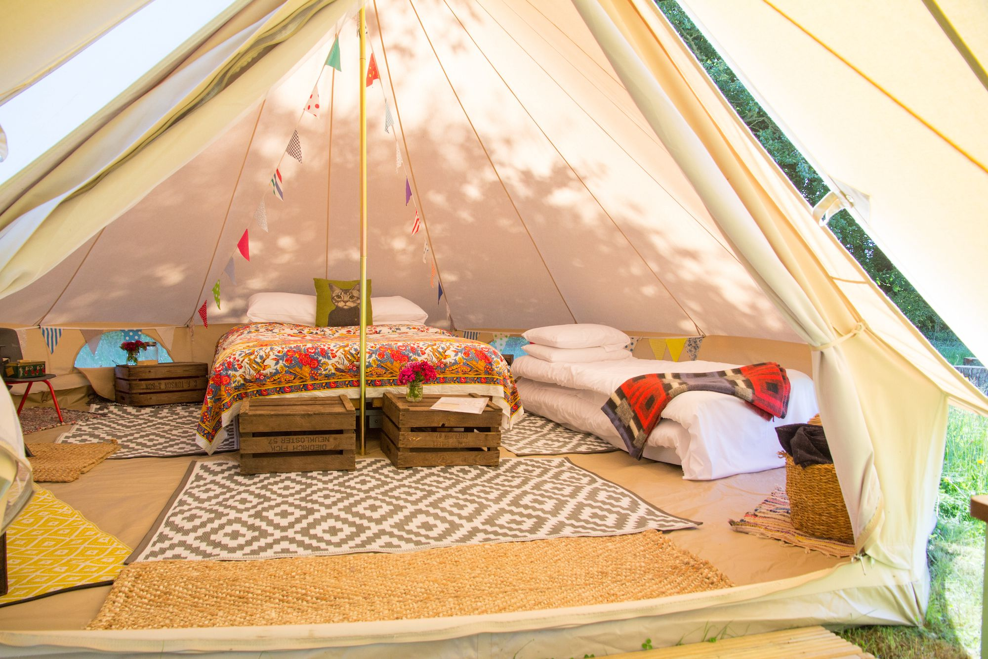 Snipe at Amber's Bell Tent Camping at Hopton Court Estate