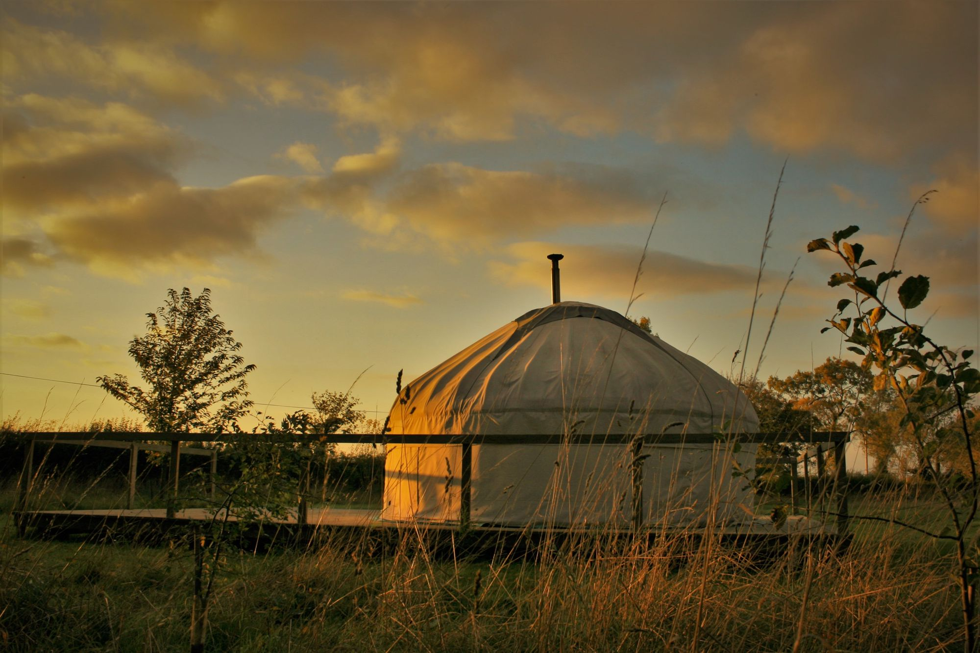 Glamping in Halesworth holidays at Cool Places