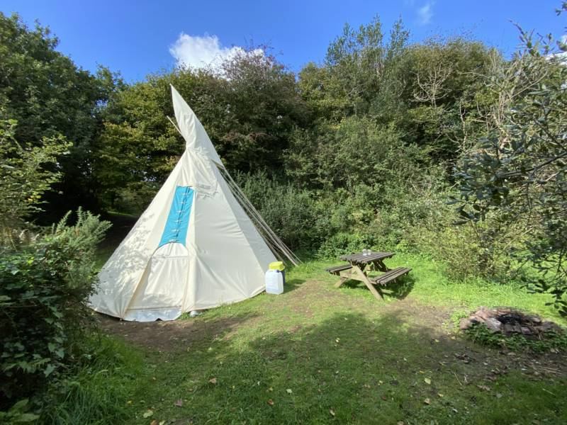 Willows - Medium Tipi - Private Site