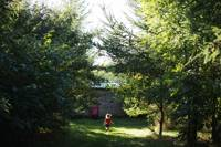 Exclusive site hire at Cwtch Woodland Camp