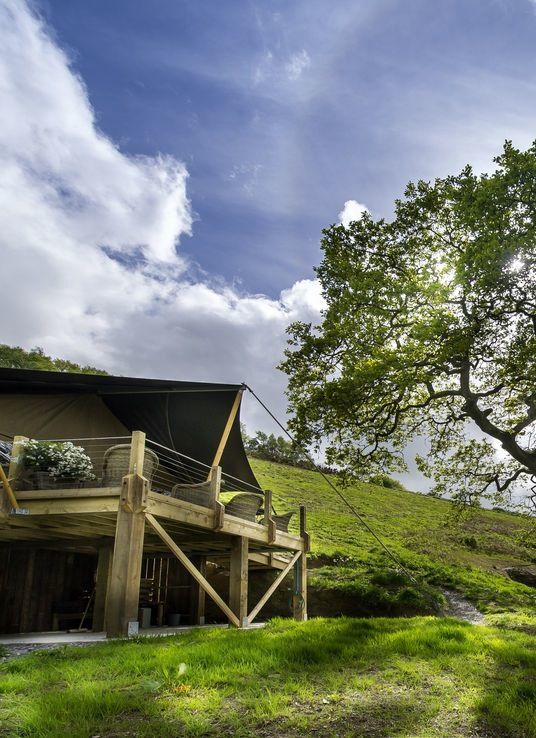 Safari tent glamping in Devon
