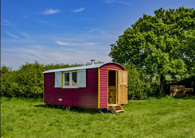 Shepherds' Hut - Poppy