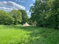 Nettle Luxury Bell Tent