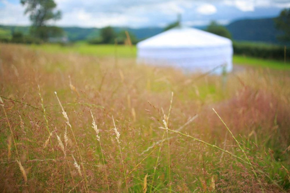 Glamping in Conwy