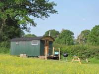 Anderida Shepherds Hut