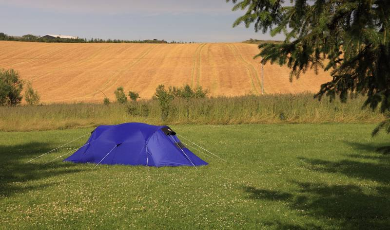 Camping close to home: 5 reasons to go camping nearby