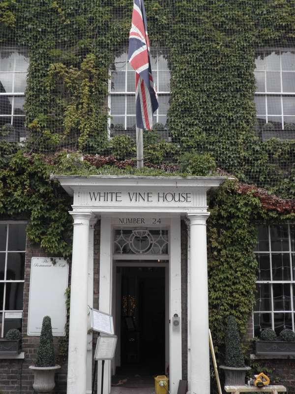 White Vine House