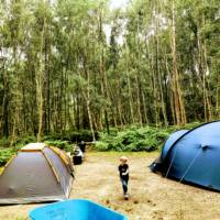 Double Forest Tent Pitch