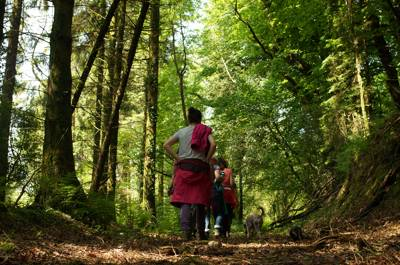 Top of the Woods Campsite Wins National Award for Sustainable Tourism... Again