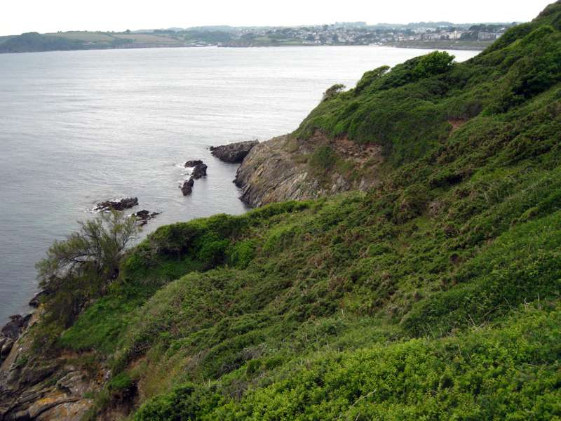 Walk Pendennis Headland