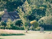 'Green' Hike Pitch