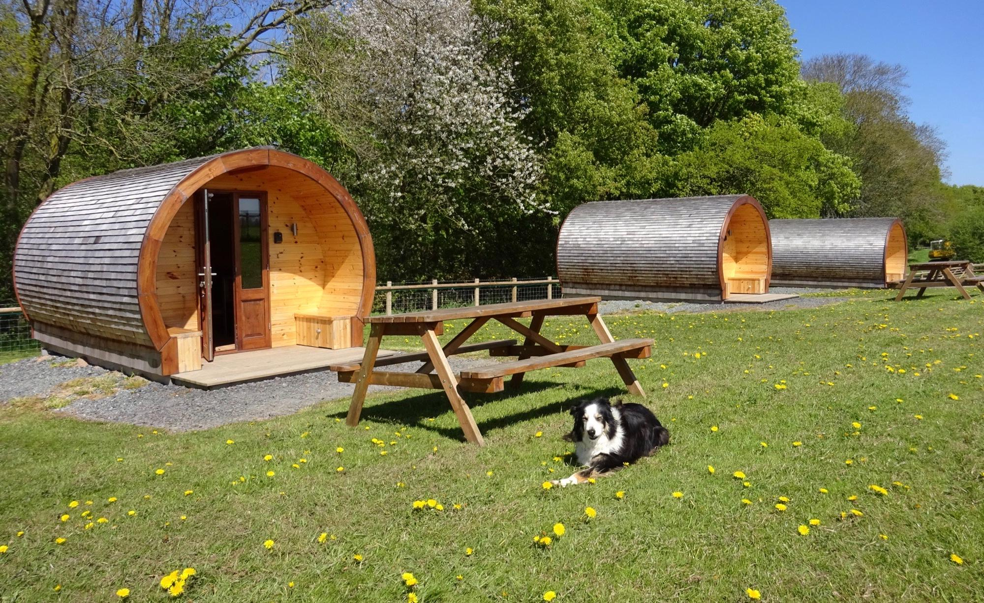 Campsites in Oswestry holidays at Cool Camping