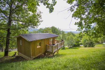 Tree House Cabane